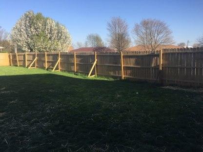 Alersen Fence 2